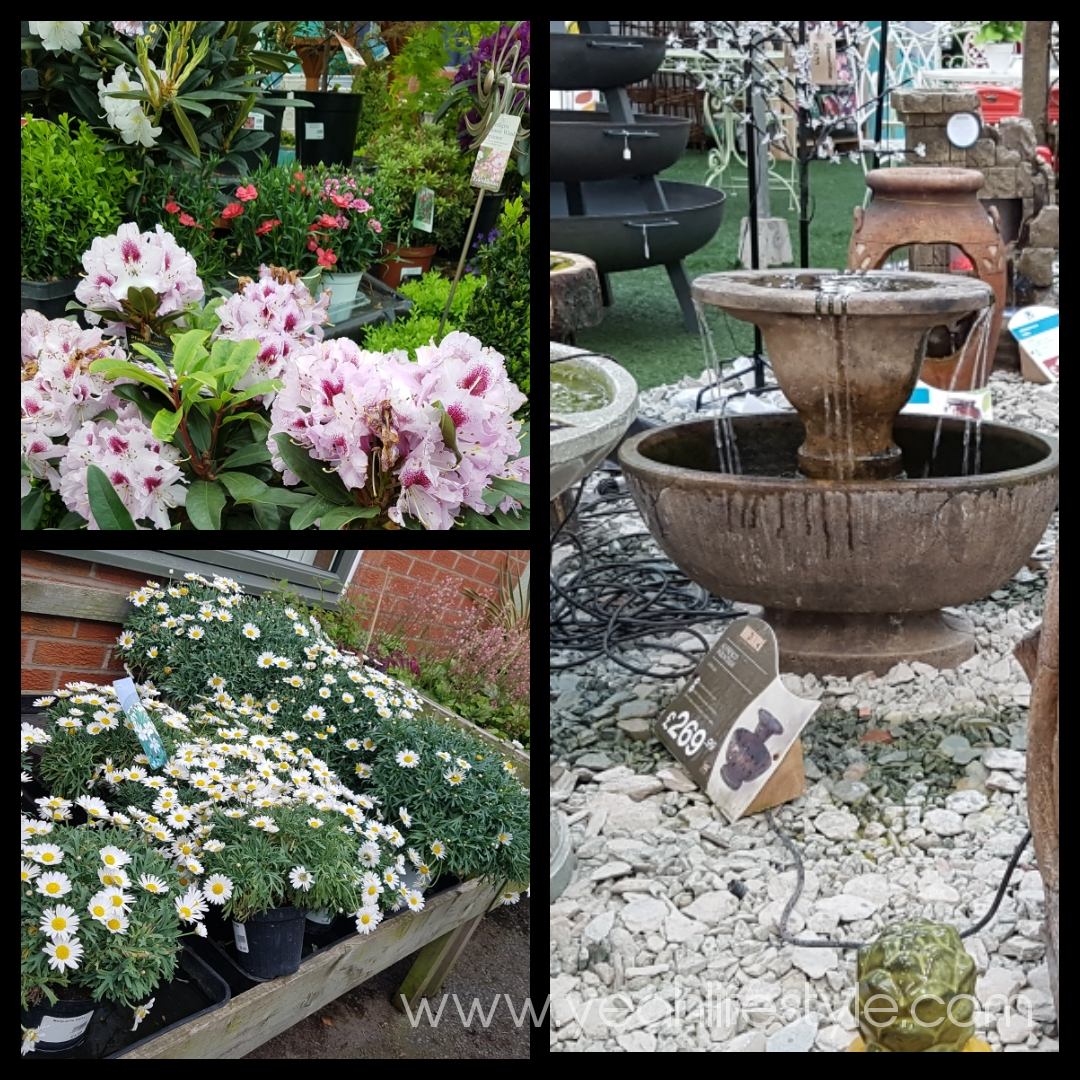 Congleton-Garden-Centre-Review-Cheshire-Yeah-Lifestyle
