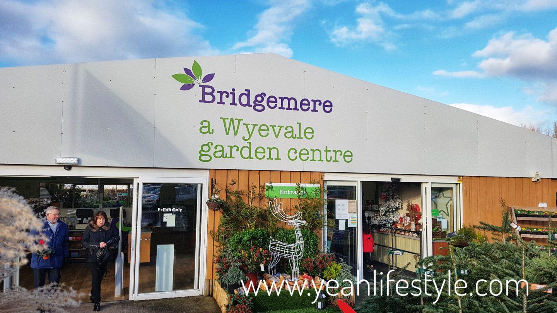 Garden Centre: Tea With Santa At Bridgemere Garden Centre In Nantwich