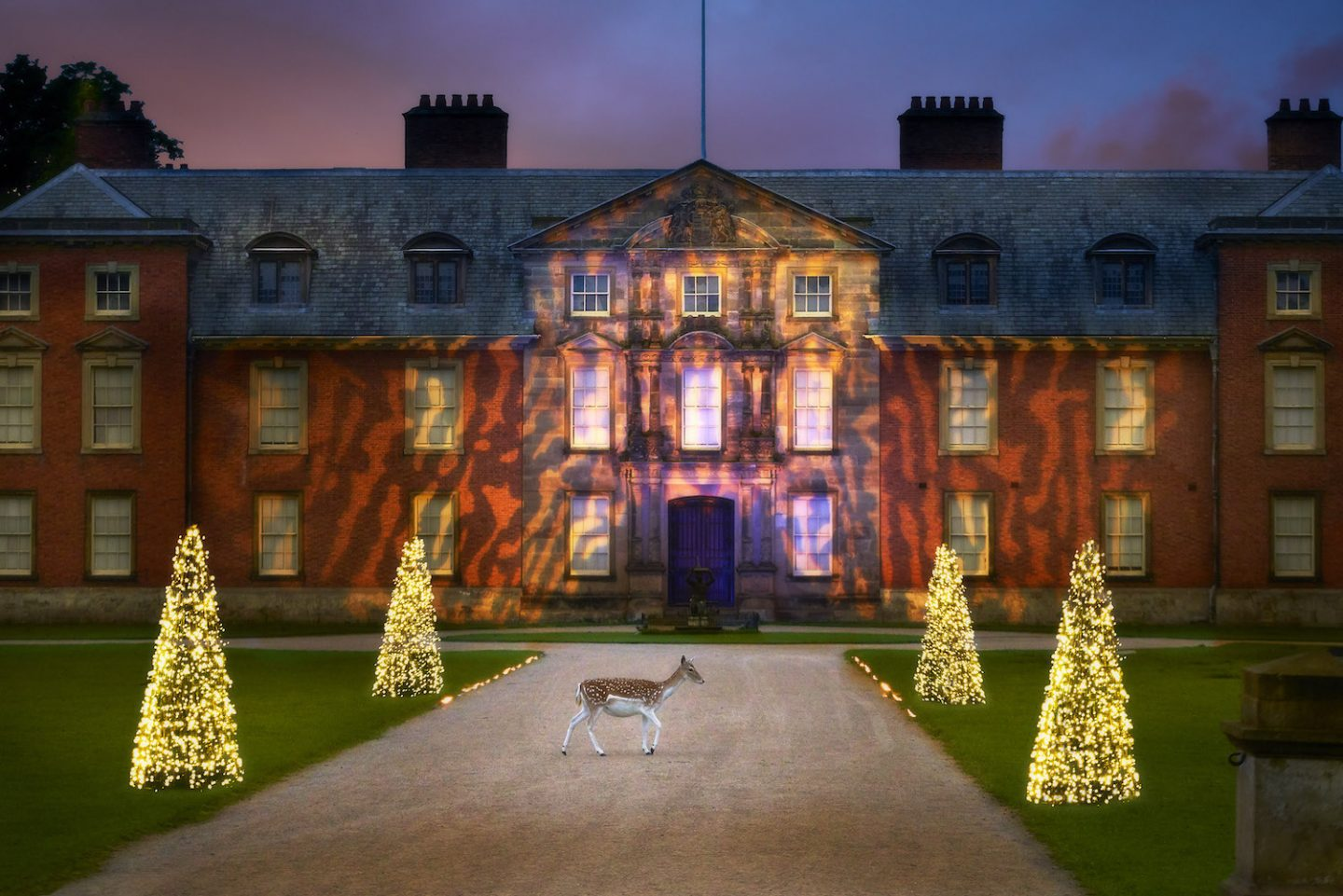 Dunham Massey's Magical Christmas after Dark Illuminated Trail