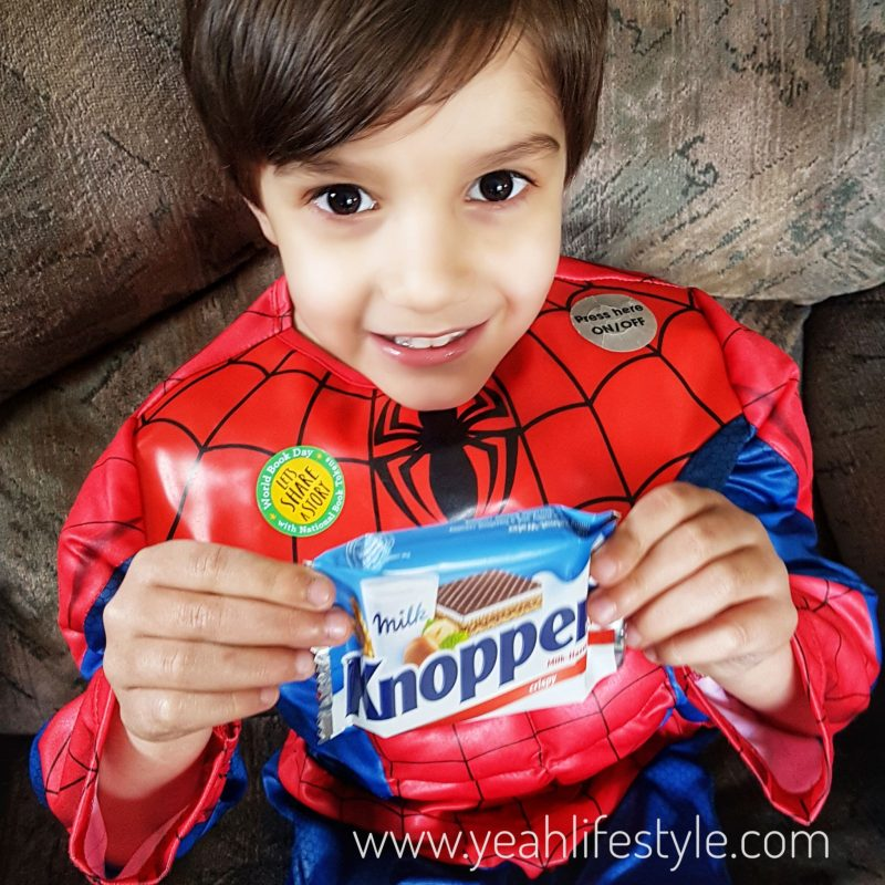 Knoppers-Chocolate-Wafer-Bar-Food-Review-Blogger-Spidey