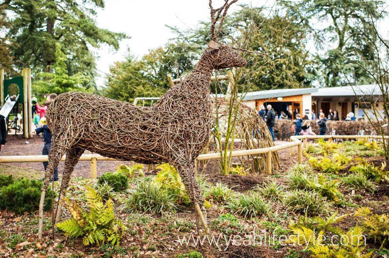 Trentham-Gardens-Staffordshire-Family-Blogger-UK-Kids-Playground-Deer
