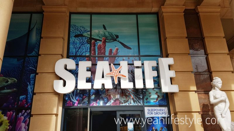 sealife-manchester-blogger-review-kids-family-day-out-activity-barton-square-intu-trafford