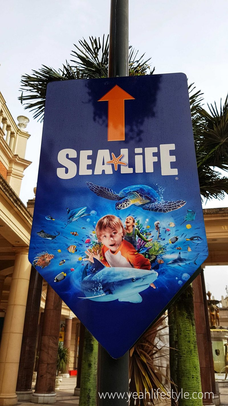 sealife-manchester-blogger-review-kids-family-day-out-activity-entrance-intu-manchester-trafford-centre-sign