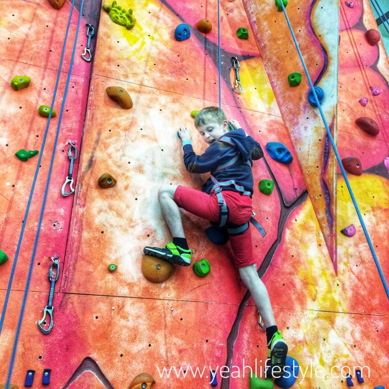 Day-Out-Family Festival-Reaseheath-College-Nantwich-Climbing-Wall