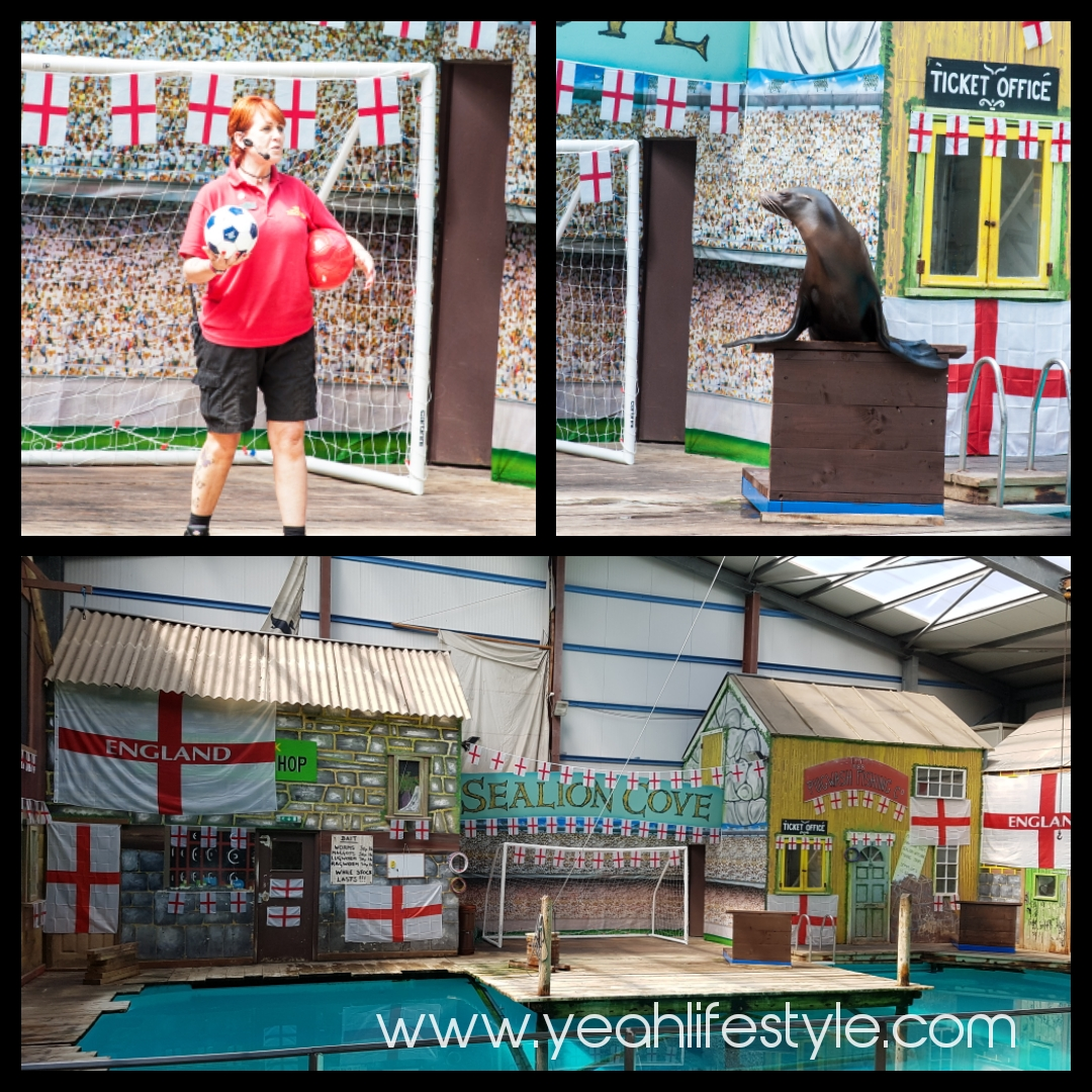 Knowsley-Safari-Park-Blogger-Review-Family-Day-Out-Sea-Lion-Display