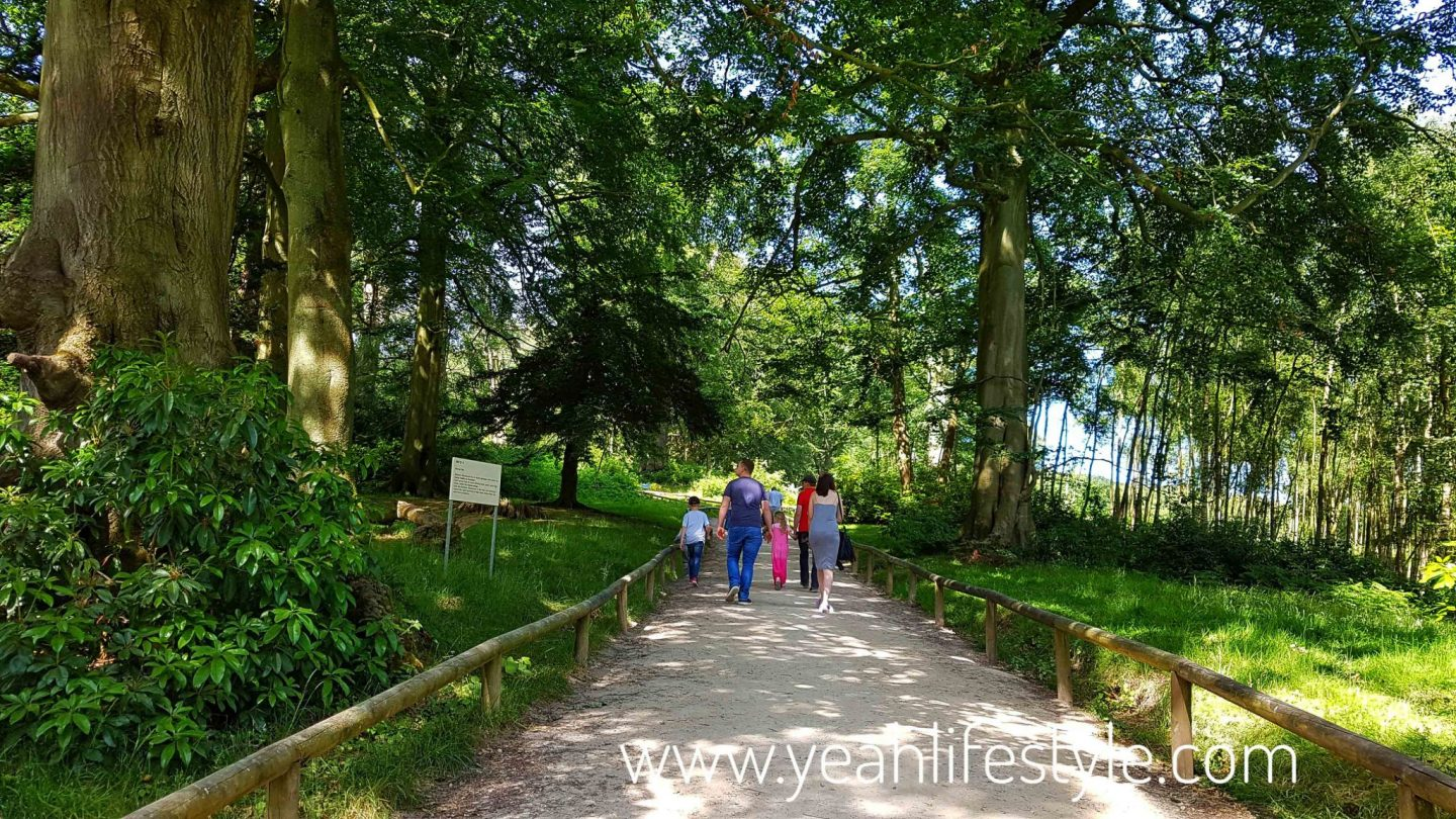 trentham-monkey-forest-travel-blogger-review-Barbary-macaque-walk-path