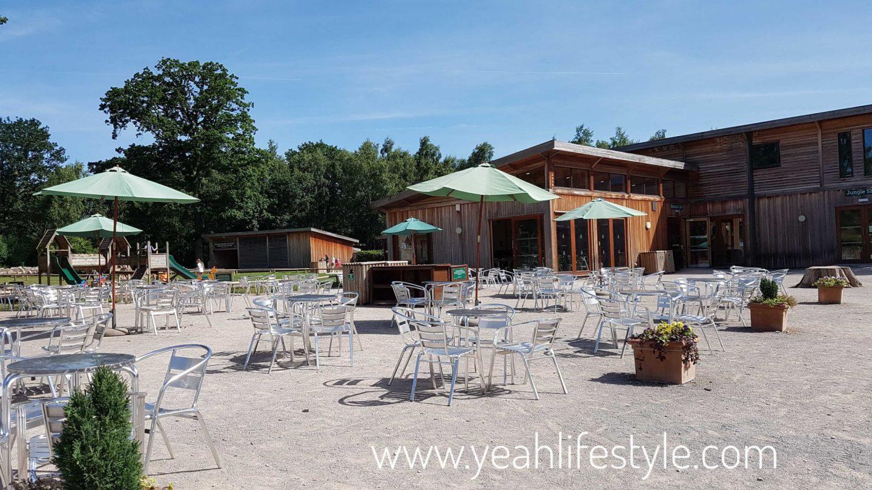 trentham-monkey-forest-travel-blogger-review-entrance-cafe