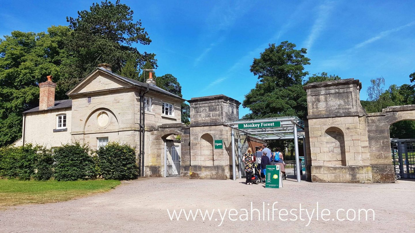 trentham-monkey-forest-travel-blogger-review-entrance-tickets