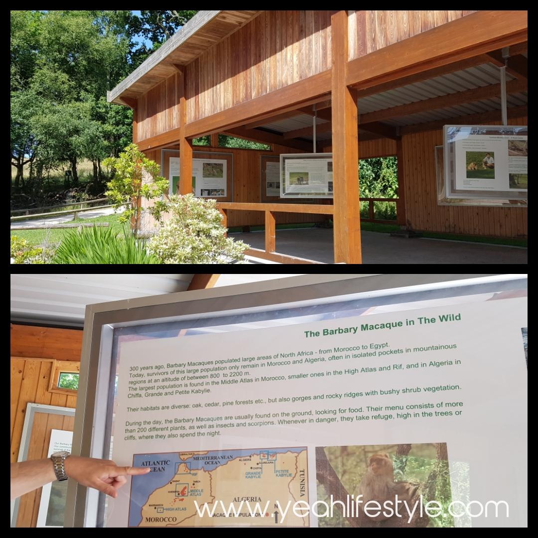 trentham-monkey-forest-travel-blogger-review-trentham-information
