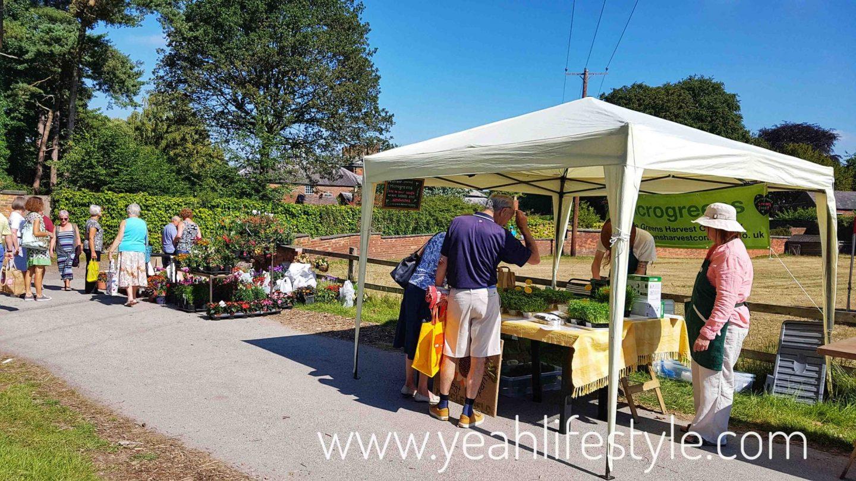 rode-hall-farmers-market-scholar-green-cheshire-blogger-review-outdoor-garden