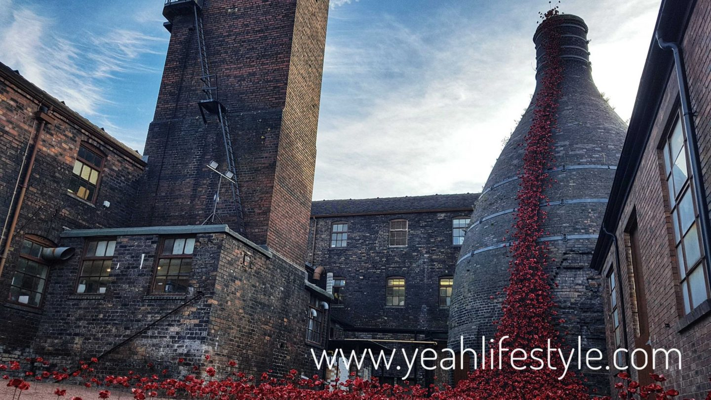 Ceramic Poppies : Weeping Window at Middleport Pottery