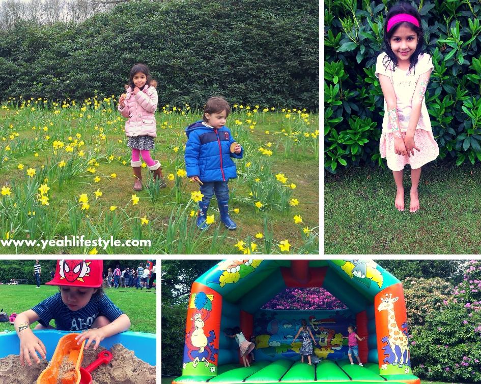 national-trust-biddulph-grange-gardens-stokeontrent-staffordshire-daffodils-spring
