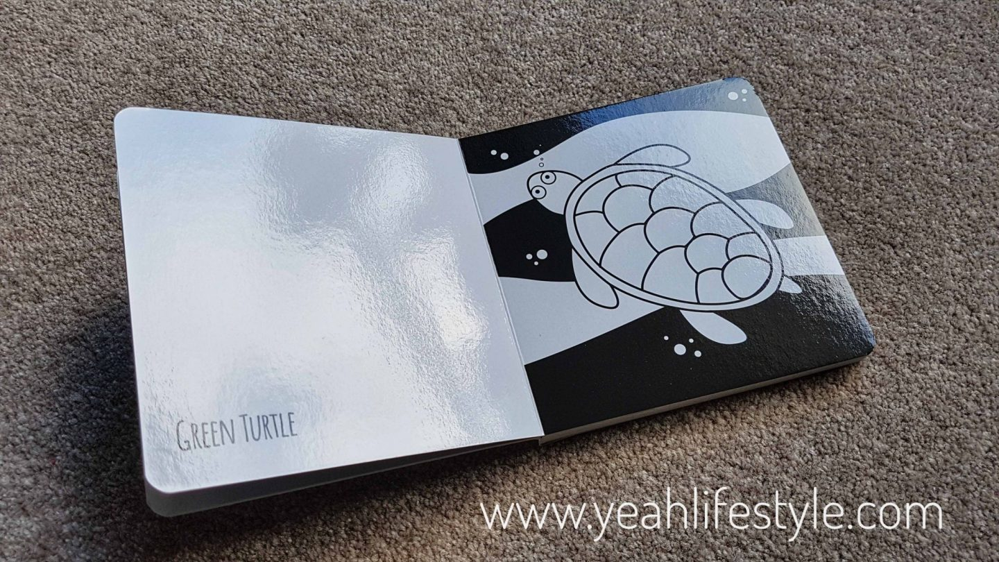 Black-and-White-Book-Project-Flash-Cards-Blogger-Review-Mum-Kid-Australia
