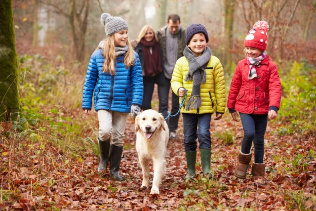 3-educational-outdoor-activities-to-enjoy-with-your-child-this-Christmas