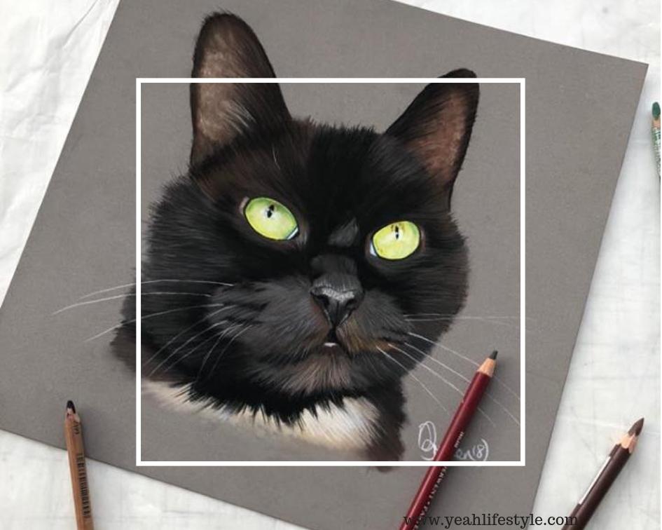 Adam's Pet Portraits Review **