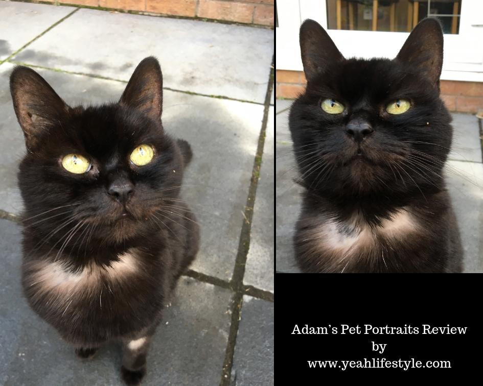Adam-Pet-Portrait-Review-Blogger-UK-Christmas-Presents-Molly