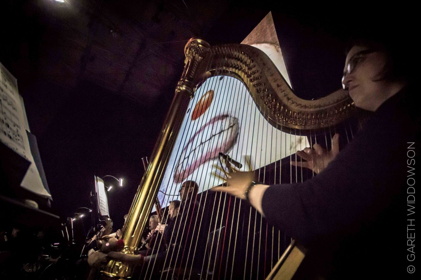 victoria-hall-stoke-snowman-and-harp-show-review